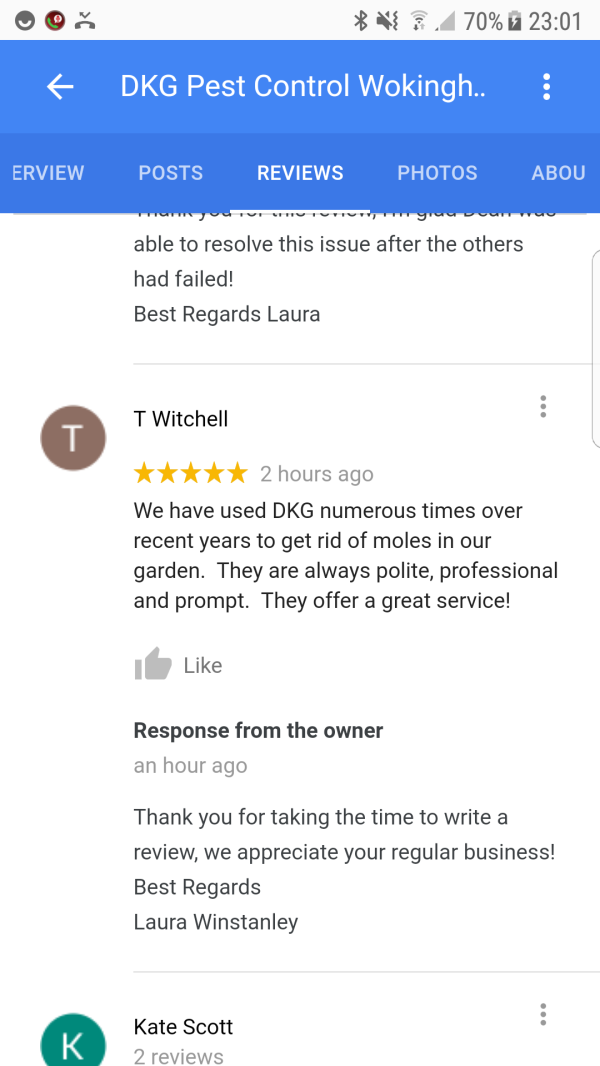 Pest Control Reviews